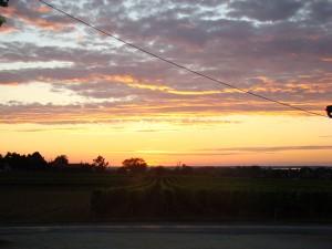 Couché de soleil sur le vignoble